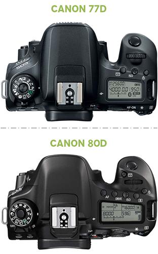 Canon 77D x Canon 80D - Fotografia Dicas (1)