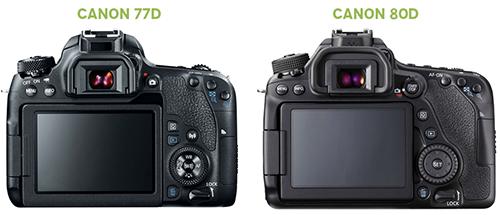Canon 77D x Canon 80D - Fotografia Dicas (2)