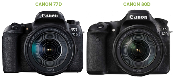 Canon 77D x Canon 80D - Fotografia Dicas (3)
