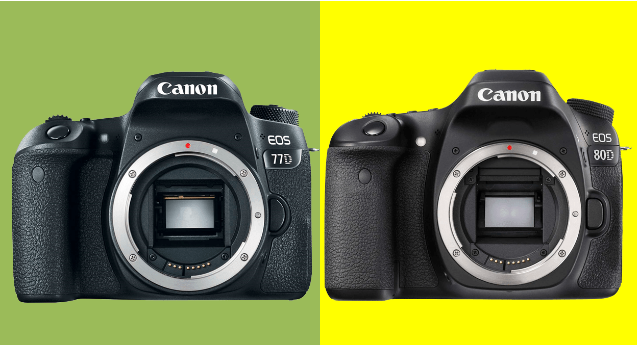 Canon 77D x Canon 80D